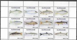 SURINAME, 2020, MNH, FISH, 12v - Fische