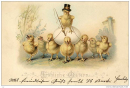 PAQUES EASTER  Küken, Chic Poussin Cocher LITHO 1899; 5 Pfg Kutscher, Driver, HAMBURG - Easter