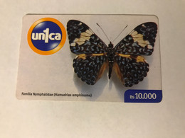 4:034  - Venezuela Butterfly - Venezuela