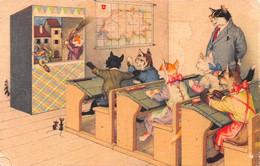 Chats Habillés - Classe D'école Théâtre Marionnette - Carte De La Suisse - Souris - Dressed Animals