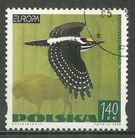 POLAND Oblitéré 3549 Europa Parcs Et Réserves Naturels Parc National De Bialowiecki Oiseau Bison Bird - Used Stamps