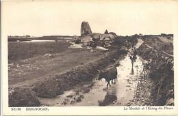 CPA Brignognan Le Menhir Et L'étang Du Phare - Brignogan-Plage