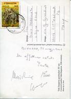 60987  Uzbekistan, Circuled Card 2001 With  Stamp Prehistory  Stregosaurus - Préhistoire