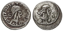 Antique Coins, Greek Coinage, Cimmerian Bosporos, Pantikapaion, Silver Stater 263-265BC, XF - Greche