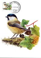 15197136 BE 19971201 Bx; Oiseau, Buzin, Mésange Boréale; CM Cob2732 Rouleau - Otros