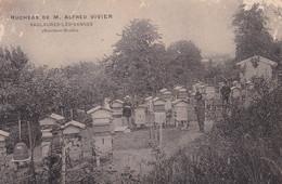 54/027..........saulxures Les Vannes ...ruchers De M Alfred Vivier - Unclassified
