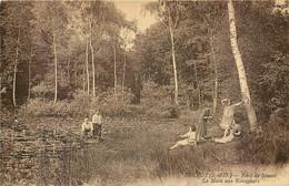 91 - BRUNOY - Au Bord De La Mare Aux Nénuphars, En Forêt De Sénart. Les Hommes Ramassent Des Fleurs Les Femmes Regardent - Brunoy