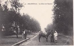 ALGERIE/006..........philippeville...pli D Angle - Non Classificati