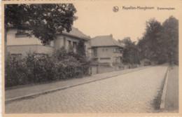 KAPELLEN /  HOOGBOOM / IJZERENWGLAAN - Kapellen