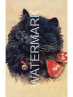 CATS KEEP ME FOR LUCK BLACK CAT ART POSTCARD VALENTINE VALTER SERIES ARTIST SIGNED F.E. VALTER - Gatos