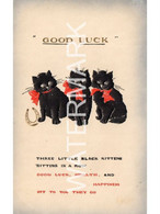 THREE LITTLE BLACK KITTENS SITTING IN A ROW GOOD LUCK OLD POSTCARD REGENT  SERIES 758 EMBOSSED - Gatos