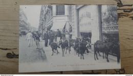 TOULOUSE : Types De Toulouse, Les Chèvres  ................ 186 - Toulouse