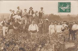 Carte Photo   VENDANGES 1912 - Pauillac