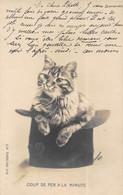 Carte Précurseur, Chat Dans Un Chapeau. Photo A. Courrier, Paris  TBE 2 Scans (Dos Vierge) - Katten