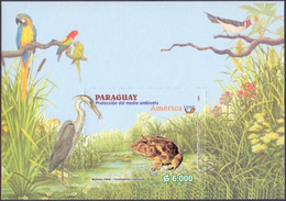 Paraguay - Birds And Frog, Souvenir Sheet, MINT, 2004 - Frösche