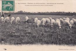 Millevache - Altri Comuni