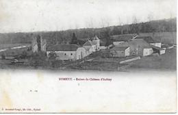 88 - VOSGES - NOMEXY - CHATEAU D'AUBIEY - DOS NON DIVISE POSTEE EN 1914 EDIT. ARMAND BOUGE LIBRAIRE A EPINAL 2 SCANS - Nomexy