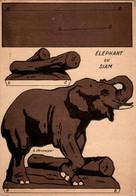 Papier Publicitaire à Découper éléphant Du Siam Elephant Asie Asiatique 12,4 Cm X 17,7 Cm En B.Etat - Werbung