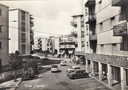 ALBISSOLA-SAVONA-VIALE LIGURIA-CARTOLINA VERA FOTOGRAFIA-NON VIAGGIATA -1955-1960 - Savona