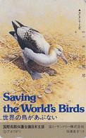 TC JAPON / 110-92091 ** ONE PUNCH ** Série 2 SAVE THE BIRDS 2/16 - OISEAU ALBATROS & COQUILLAGE JAPAN PC -  - 5372 - Otros