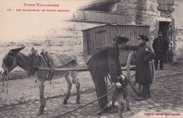 """TOULOUSE """" Tondeurs De Chien Errants , Top Carte""""     N°6740 - Toulouse"""