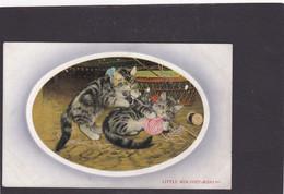 Cat Card  -  Tabby Cats  -   Little Mischief Makers - Gatos