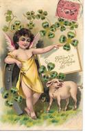 Pig, Schwein, Porc, Cochon, Piglet, Angel, Engel, Ange, Clover, Klee, Trèfle, Angelo, Maiale / 1906 - Anno Nuovo