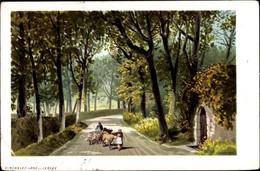 Lithographie Jersey Kanalinseln, Vinchelez Lane, Bauern, Kühe, Schafe - Other