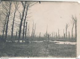 Photo (17,5 X 12 Cm) : Guerre 1914/18 - Bras Panorama - La Route Camoufflée (BP) 1.WK - WW1 - Guerra, Militares