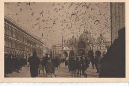 Venezia - Piazza S. Marco Con Volata Di Piccioni - Venezia (Venedig)