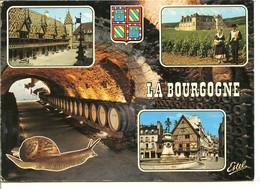 Escargot Touristique - La Bourgogne - L'Hôtel-Dieu De Beaune - Clos Vougeot Et Autres Jolis Endroits - Other