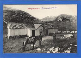 NORVEGE - Skogadalsboen (voir Descriptif) - Norvegia