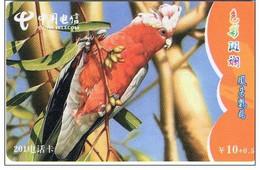 Perruche  Oiseau Bird Télécarte Phonecard Telefonkarten B142 - Otros