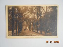 Cognac. Esplanade Du Parc. Mongis 20 PM 1941 - Cognac