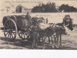 NAPOLI-CARRO DA TRASPORTO-CARTOLINA NON VIAGGIATA 1915-1925 - Napoli (Naples)