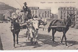 NAPOLI-CARRO DA TRASPORTO-BOVE-CAVALLO-ASINO-CARTOLINA NON VIAGGIATA 1915-1925 - Napoli (Naples)