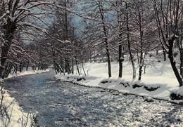 Haute Auvergne (15) - Le Ruisseau Dans Les Neiges - Non Classés