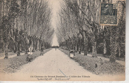 76 - DAUBEUF SERVILLE - Château Du Grand Daubeuf - L' Allée Des Tilleuls - Otros Municipios