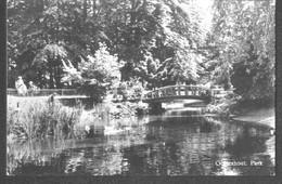 Nederland Holland Pays Bas Oosterhout Park, Brug En Eenden - Oosterhout