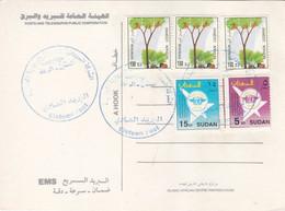 Post Card SUDAN ELSETTEN POST OFFICE CDS 2020 #6 - Soedan (1954-...)