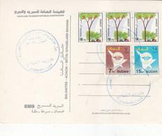 Post Card SUDAN ELSETTEN POST OFFICE CDS 2020 #8 - Soedan (1954-...)