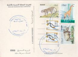 Post Card SUDAN ELSETTEN POST OFFICE CDS 2020 #9 - Soedan (1954-...)