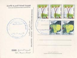 Post Card SUDAN  Definitive 9 The Issue   #39 - Soedan (1954-...)