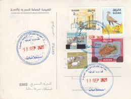 Post Card SUDAN  Definitive 8 The Issue #65 - Soedan (1954-...)