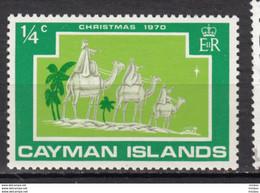 Cayman Islands, Noël, Christmas, Rois Mages, Kings, Magi, étoile, Star, Chameau, Camel - Natale