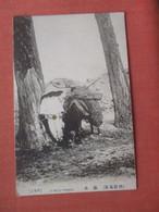 Pack Horse  Japan ?      Ref  4527 - Sin Clasificación