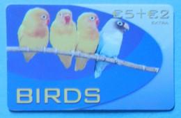 Pappagallo Parrot Love Bird Birds Uccello Agapornis Italia Italy Prepaid - Pappagalli