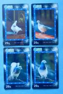 China Cina X4 Bird Birds Uccello Pajaro Aves Pigeon Dove CNC - Otros