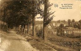 033 417 - CPA - Belgique - Watermaal-Bosvoorde - Watermael-Boitsfort - Rue De L'Etang Montagne Des Chats - Watermael-Boitsfort - Watermaal-Bosvoorde
