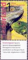 Netherlands - Green Iguana (Iguana Iguana), Stamp, MINT, 2013 - Sonstige